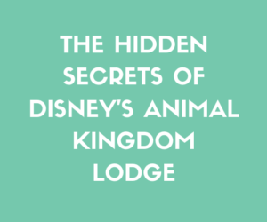 The Hidden Secrets of Disney's Animal Kingdom Lodge